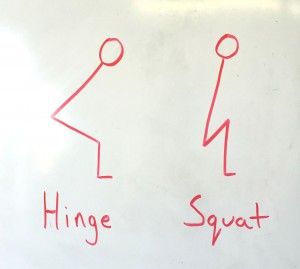 hinge vs squat